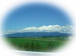 Sakata1_20137